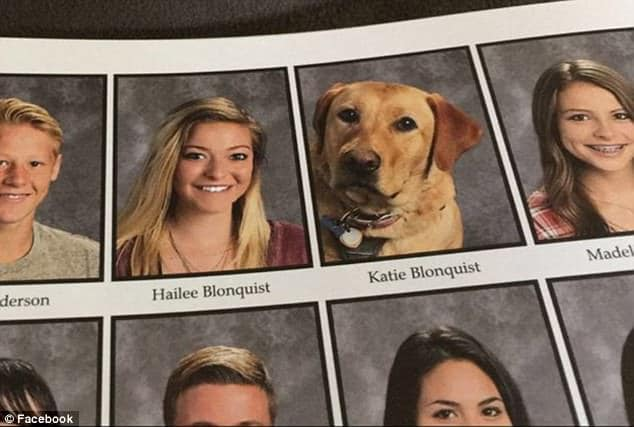 Yearbook with Service Dog photo